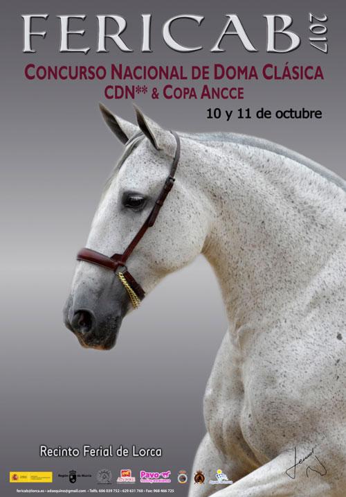 Concurso CDN ** Fericab - Copa ANCCE